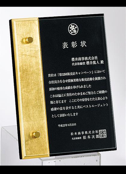 SL-P22-02